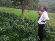 अध्यक्ष, प्रमुख प्रशासकीय अधिकृत सहित को टोलि भिमसेनथापा गाउँपालिकाको कृषि पकेट क्षेत्र अनुगमन गर्दै ।